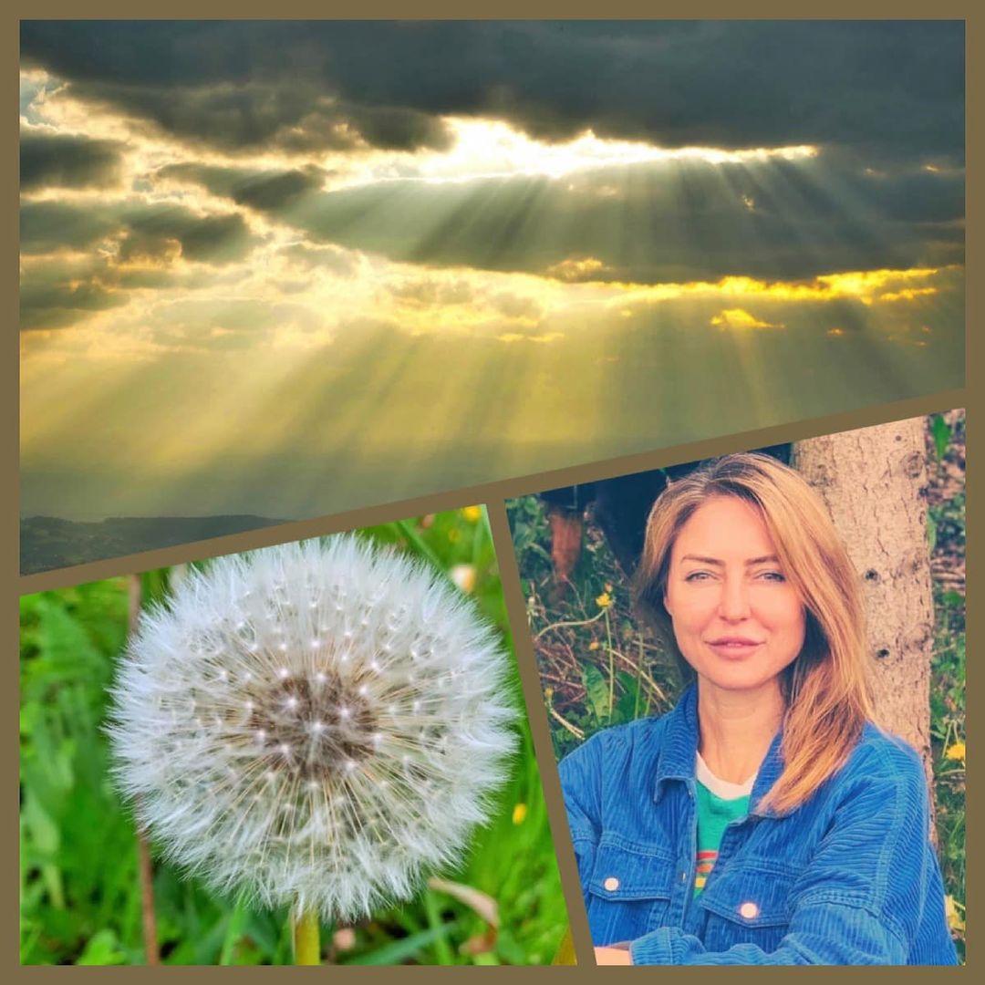 nadine-reuter-blog-erdung-natur