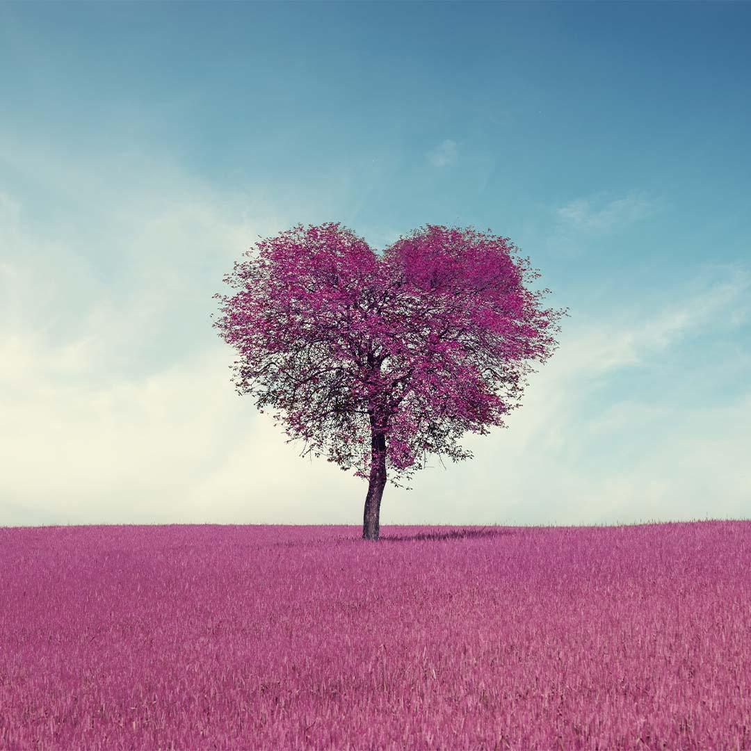 nadine-reuter-meditation-die-neue-welt-beginnt-in-deinem-herzen-